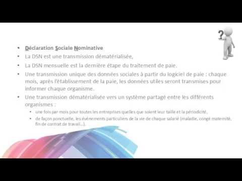 Declaration Sociale Nominative Dsn Youtube