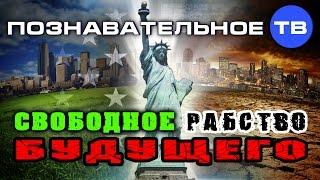 Свободное рабство будущего (Познавательное ТВ, Михаил Величко)