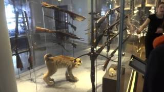 видео Тульский музей оружия