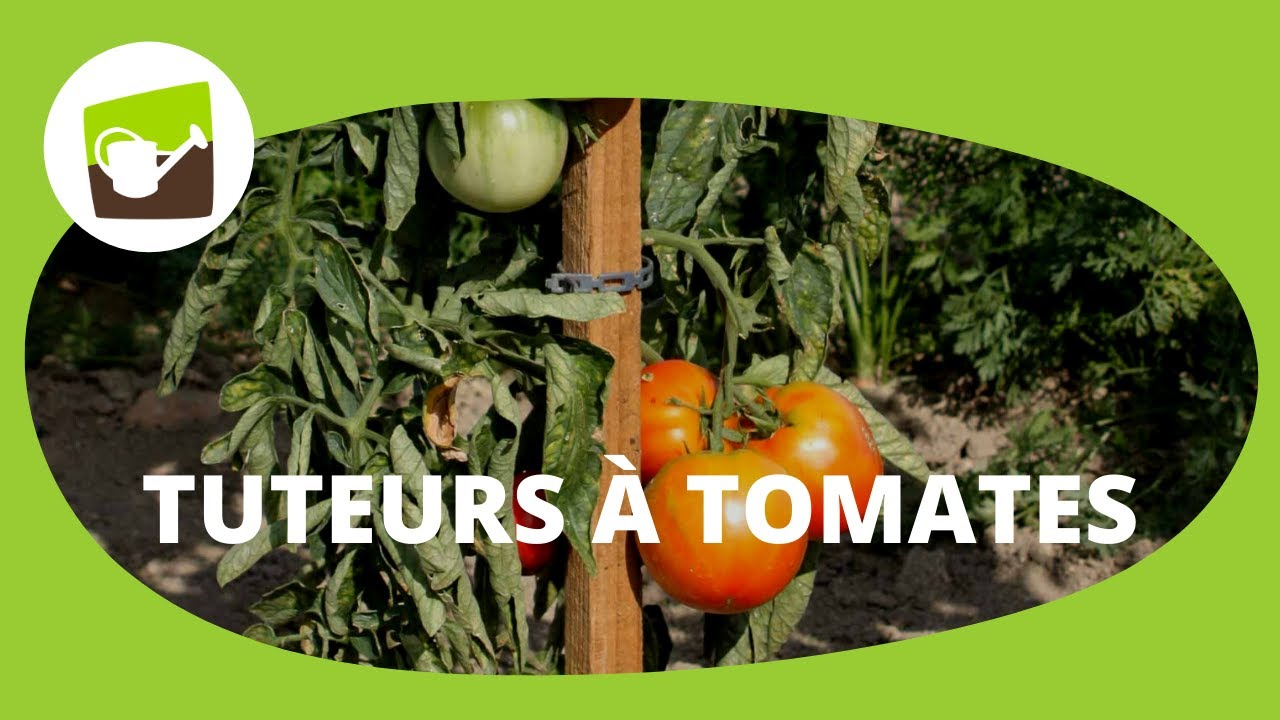 le piquet de tomates 1 50 m en bois avec son c ne imputrescible jardin et saisons youtube. Black Bedroom Furniture Sets. Home Design Ideas
