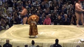 この日の大相撲観戦記はこちら http://guesthouse-hostel.com/2014-sumo...