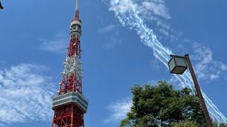 ブルーインパルス×東京タワー