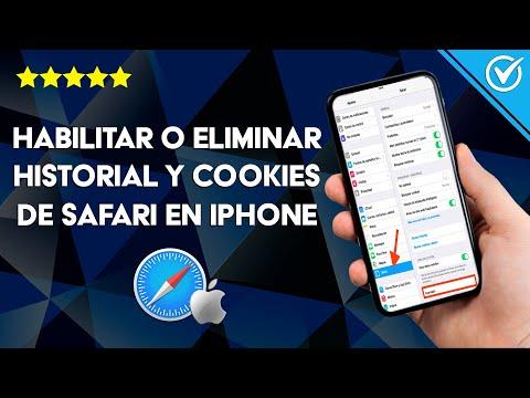 Cómo Habilitar o Eliminar el Historial y Cookies de Safari en iPhone 11 Pro Max o iPad