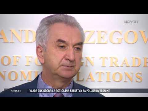 MIRKO ŠAROVIĆ JASAN: BIH ĆE DOBITI NOVE SANKCIJE ENERGETSKE ZAJEDNICE (16 11 2017)