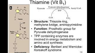 Lecture 7 Vitamins