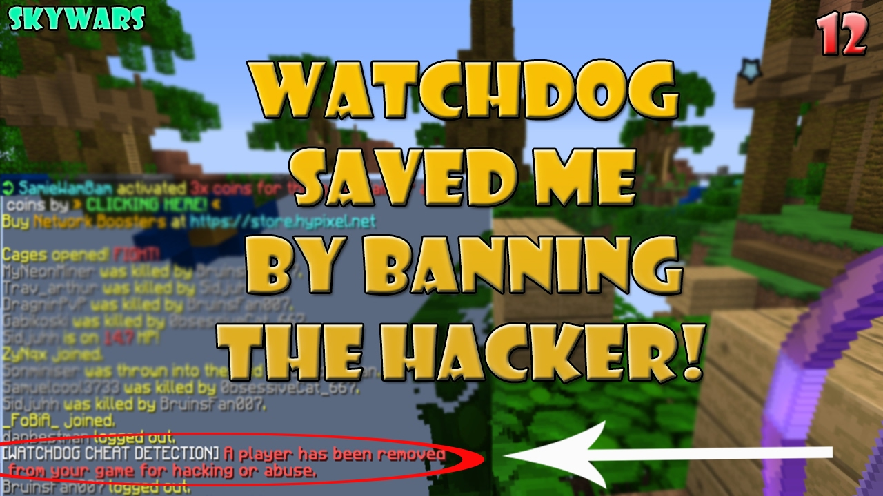 Hypixel Watchdog Images - Reverse Search