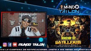 Gatilleros (Remix) - Cosculluela,Arcangel,Almighty,Ñengo,Farruko,Pusho,Kendo,Alexio - REACCION TBT