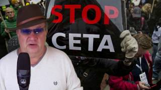CETA z jajami za 99 centów.