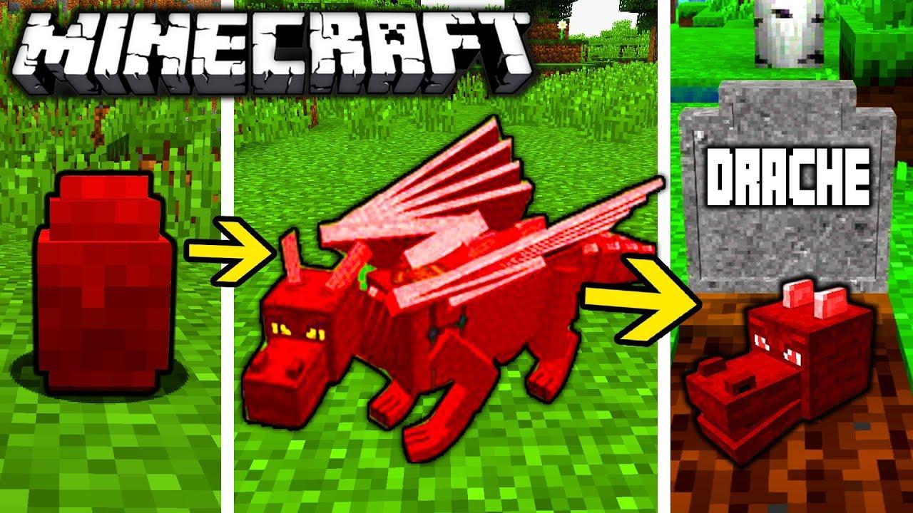 Niedlich Ausmalbilder Minecraft Drache Fotos Malvorlagen Von
