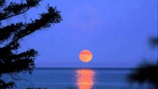 Download Kosha Roots - Moon Ray MP3 song and Music Video