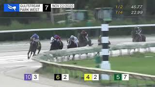 Vidéo de la course PMU JUVENILE TURF STAKES