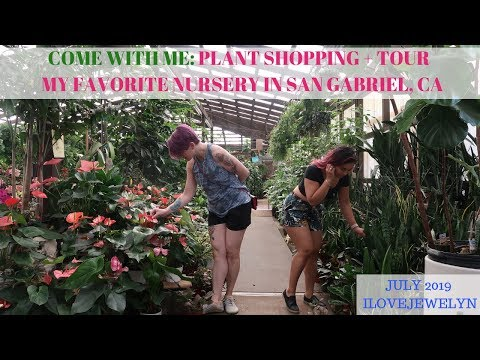 Come With Me: Plant Shopping + Tour   San Gabriel, CA   July 2019   ILOVEJEWELYN