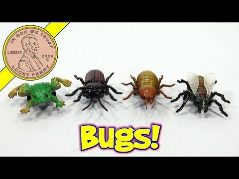 Rolling Creatures Pull-Back Bugs!