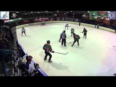 Canberra Ice Hockey - Senior C 2014 Grand Final - Redbacks v Senators