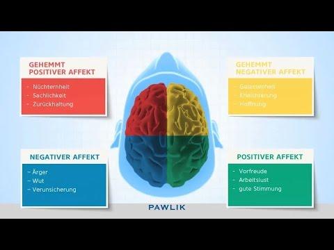 PAWLIK  Handlungssteuerungsmodell: Affekte und Emotionen