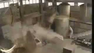 Ten Tigers From Guangdong Stephen Au fight scene
