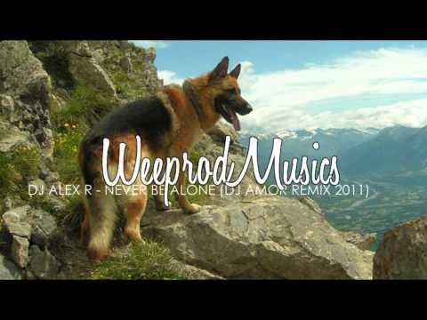 Dj Alex R - Never Be Alone (Dj Amor Remix 2011)