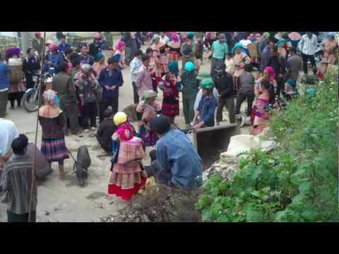 Bac Ha Market: Pigs!