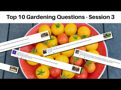 Your Top 10 Gardening Questions Answered! Garden Questions & Answers Session 3