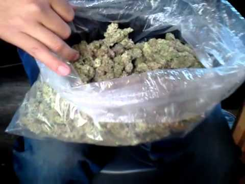 how to buy a pound of weed