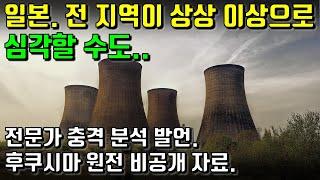일본. 전 지역이 상상 이상으로 심각할 수도.. 후쿠시마 원전 비공개 자료. 원전 노심 전문가의 충격 분석 발언.