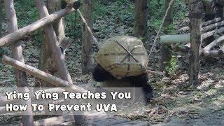 Whitening Master Ying Ying Teaches You How To Prevent UVA | iPanda