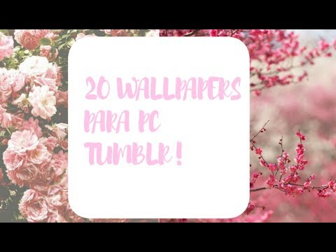 Wallpapers Tumblr Para Pc Youtube