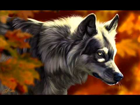 Phantom of the opera & Moonlight sonata (techno mix).wmv