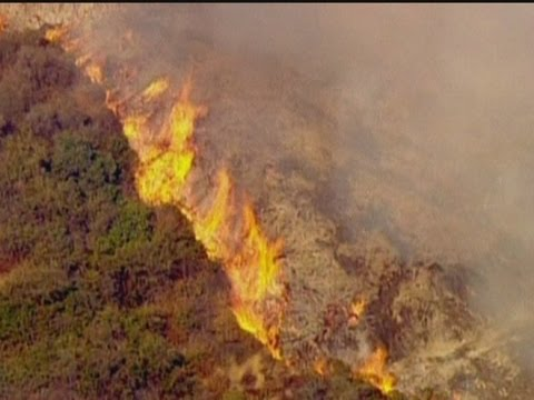 Wildfire erupts in Los Angeles: Helicopters and aeroplanes help put out the blaze