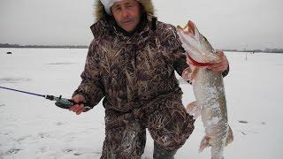 Рыбалка в Старчихе, Волга.