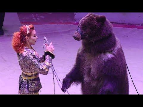Сочинский цирк представил новогоднее шоу «Добрая зимняя сказка»