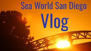 SEA WORLD SAN DIEGO VLOG 2019