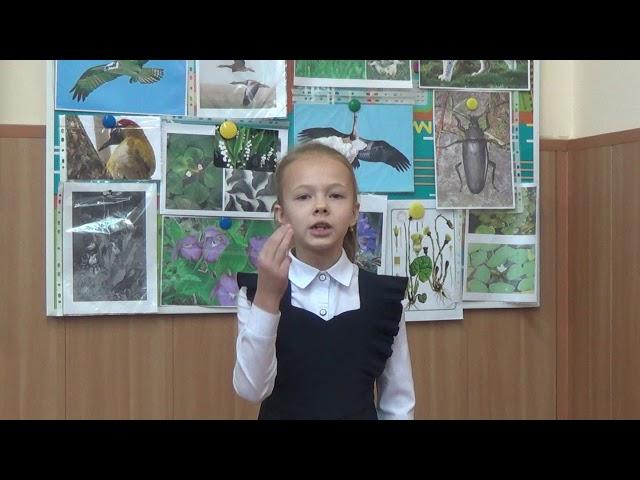Изображение предпросмотра прочтения – ТатьянаЛобаскина читает произведение «Рукавички я забыла» А.Л.Барто