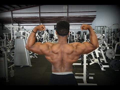 Basic Tips On Growing Your Back