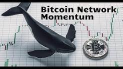 Bitcoin Network Momentum - L'indicateur qui compare les whales aux autres investisseurs