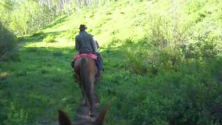 west elk wilderness trail ride with tenderfoot outfitters gunnison colorado