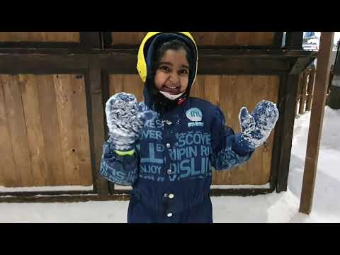 The incredible Ski Dubai Snow Penguins!