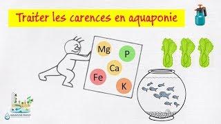 📉 Traiter les carences en aquaponie