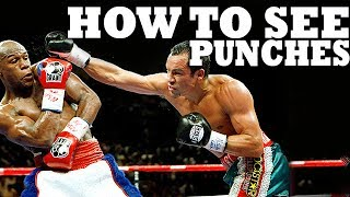 How to See a Punch Coming in Boxing, MMA, or Street Fight