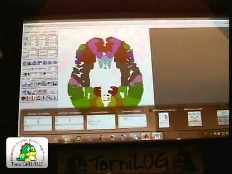 Software free per lo studio delle neuroscienze [linux day 2011 - talk 6]