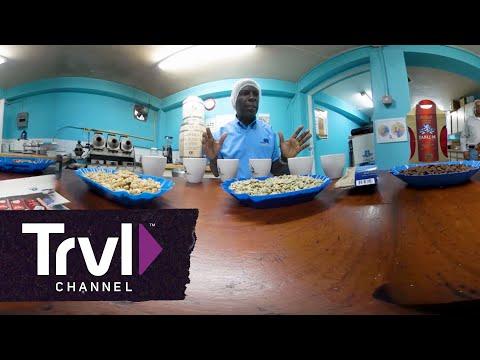 Explore Blue Mountain Coffee - 360 Video