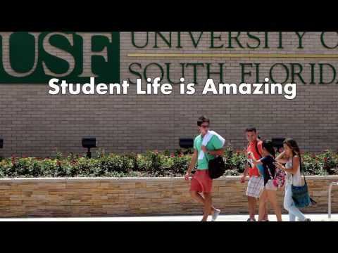 University of South Florida Tampa - 5 Things I Wish I Knew Before Attending