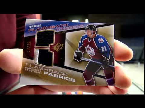 450 Sports #2848 - 2008/09 Spx hockey double box break