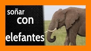 Soñar con Elefantes 🐘 Hacia el Éxito Paso a Paso 🦶🏽