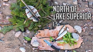 Two Brothers Alone in the Wilderness - E.5 - the Retreat, Trekking for Trout & Shore Lunch