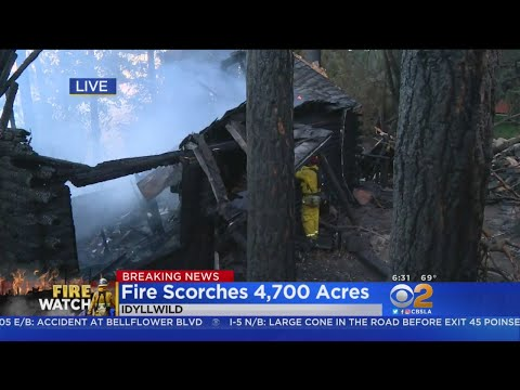 Cranston Fire Continues To Rage In Idyllwild