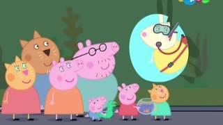 Свинка Пеппа Очень взрослая Пеппа #DJESSMAY