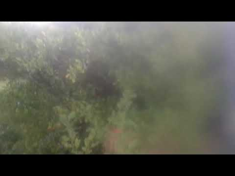 KENT LEROY-BUSCA PRIMERO EL REINO DE DIOS from YouTube · Duration:  2 minutes 50 seconds