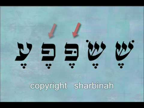 The Hebrew Vowels