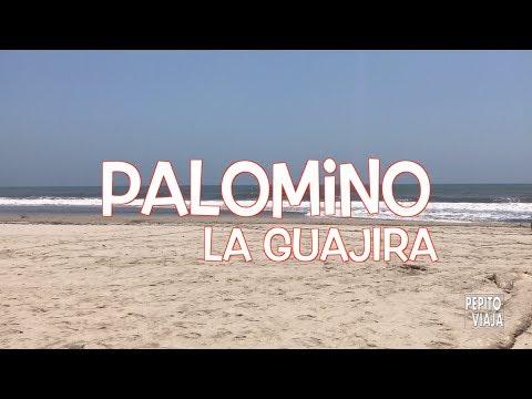 Palomino, Guajira ¿Cómo llegar? ¿Qué hacer? | Pepito Viaja